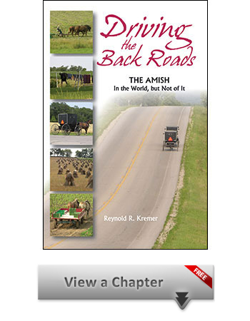 Amish Book Sample Chapter